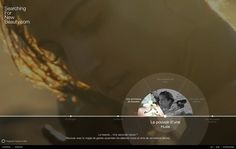 nanozoom   website