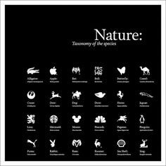 Corey Holms - Nature #logo #design #graphic #poster