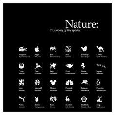 Corey Holms - Nature #logo #design #graphic #poster