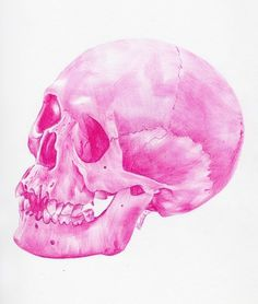 Ballpoint pen drawings. on the Behance Network #skull #pencil #pink #draw