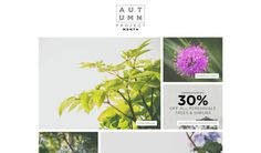 FAQ — Autumn Project Month Lookbook #plants #photography #studio #foiliage #flowers