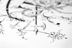 Empire - Buzzsgraphics #wild #buzzsgraphics #ornate #empire #illustration #typography