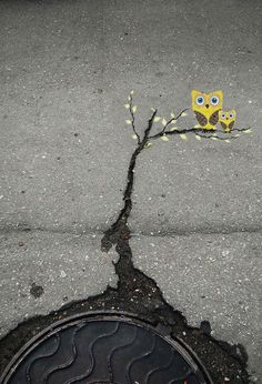 CJWHO ™ (Subtle Street Art by Alexey Menschikov Alexey...) #design #illustration #art #street #cute