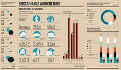 Resultado de imagem para agriculture sustainability
