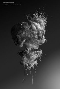 Form minus Function on Behance #abstract #water #shapes #monochrome #silk #3d