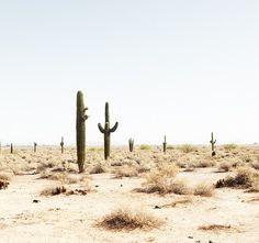 Travel Photography by Josef Hoflehner