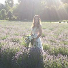 c/o violet wedding
