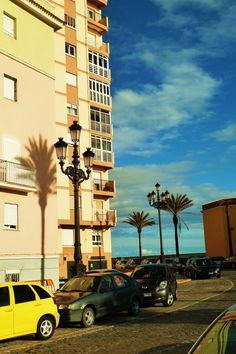 Cadizzle 2011 on Behance #post #lamp #palm #spain #wallb #tree #cadiz #shadow