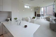 Monzen-nakacho House by LEVEL Architects