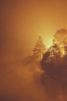 The Burn. #stockholm #fog