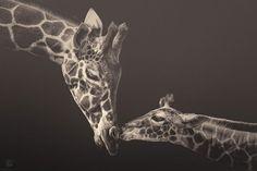 africa-souls-zoo-photography-manuela-kulpa-1