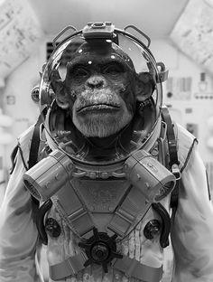 Space chimp #zbrushsculptor #maarten #verhoeven