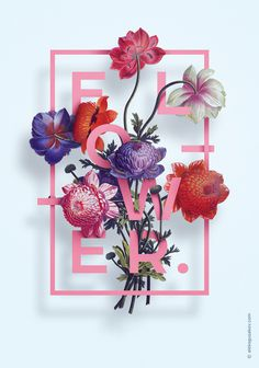 Illustration «Flower» by Aleksandr Gusakov #design #graphic #illustration #poster #flower