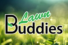 Call A Buddy | Lawn Buddies gardening home maintenance Canberra