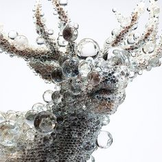 Crystal Bead Taxidermy by Kohei Nawa #taxidermy #crystal #beads #elk #art