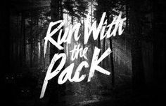 R U N W I T H T H E G O L D E N W O L F #pack #run #with #the