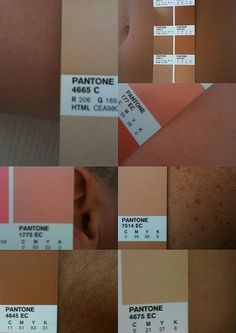 ordinary day o zone palette: summer skin #colors #colour #pantone #palette
