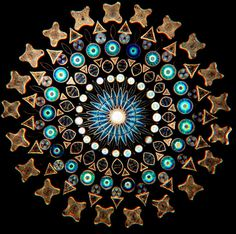 Contemporary Artistic Arrangements of Microscopic Diatoms by Klaus Kemp science microbes fossils algae #klauskemp science microbes fossils a