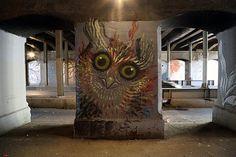 hitnes | Tumblr #owl #hitnes