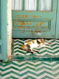 Vintage by Vero #interior #design #cat #floor #deco #decoration