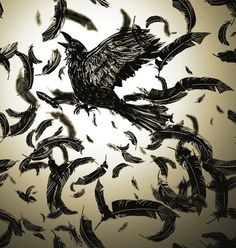 Franco Giovanella Portfolio Ilustração #feather #black #bird #photoshop #fly #crow