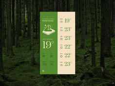 Green Forecast Weather App Theme