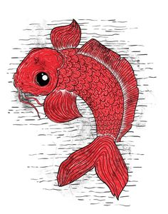 Carpa #red #alexandre #fish #illustration #drawing