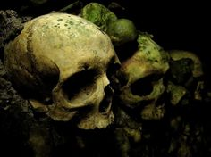 IMG_3913_adjust.jpg (800×600) #skeleton #photography #skulls #contrast #dark