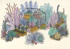 ebony-eden: Coral garden #garden #greenhouse #illustration #plants