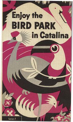 Brochure for the bird park on Catalina Island. Cool illustration. | Inspiration DE