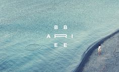 Ari Bre Bre Filmmaker | Identity on Behance #logo