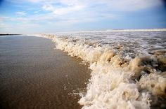 Seaside #nature