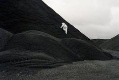 Allison Davies   PICDIT #photo #photography #landscape