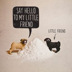 FFFFOUND! | Pugs + Drugs | Flickr - Photo Sharing! #pugs #illustration #dogs