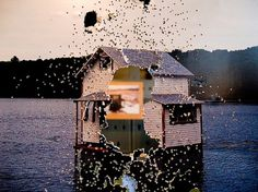 Chris Larson | Flickr - Photo Sharing! #chris #house #larson #photography #lake #shotgun