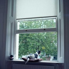 Photography by Elena Alhimovich