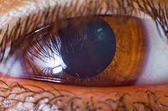 All sizes | just an eye | Flickr - Photo Sharing!