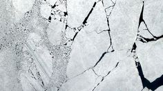 Ice on Neva Bay, St. Petersburg #satellite #pattern #white #petersburg #earth #st #russia