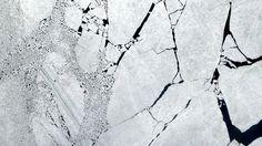 Ice on Neva Bay, St. Petersburg #satellite #pattern #white #petersburg #earth #st #russia