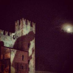 Photo by sigurros • Instagram #sigur #ros #verona #concert #shadow