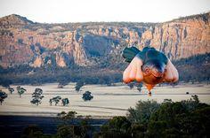 the skywhale hot air balloon by patricia piccinini #aussie
