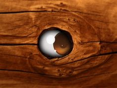 Pablo Lobo Portfolio #wood #creepy #eye