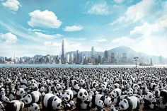 Paulo Grangeon has created 1,600 papier-mache pandas, each representing one of the pandas currently alive. They will travel the world as an