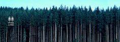logo tree pine wood grass green forest