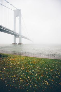 http://13thwitness.com/post/34617328507/verrazano-narrows-bridge-2012 #fog #water #grass #photography #bridge