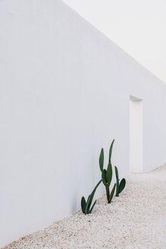 White stone block wall. Masseria Moroseta by Andrew Trotter. © Salva López. #wall #stoneblockwall