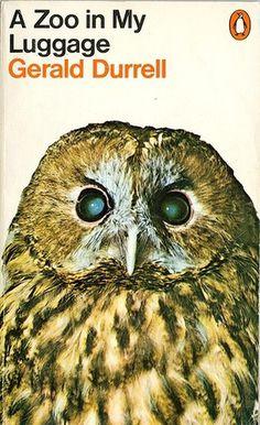 butdoesitfloat.com - Images #owl #zoo