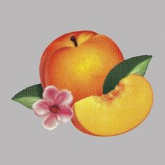 Phoenix–Bankrupt! #album #fruit #floral #artwork #illustration