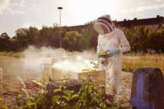 Urban Beekeepers by Stefan Hobmaier #inspiration #photography #art