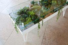 #plants #livingfurniture #furniture